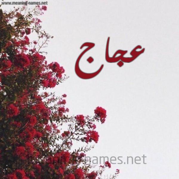 صورة اسم عجاج AGAG شكل 18 صوره الورد الأحمر للإسم بخط رقعة