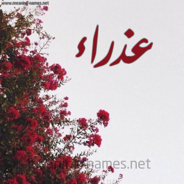صورة اسم عذراء Adhra'a شكل 18 صوره الورد الأحمر للإسم بخط رقعة