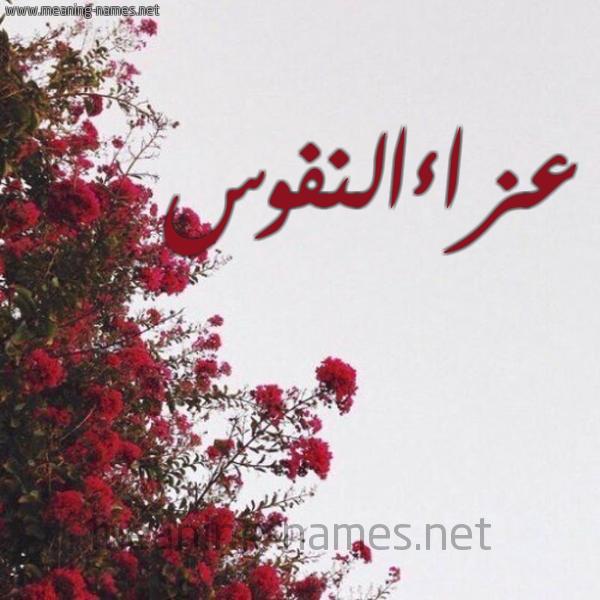 صورة اسم عزاءالنفوس Aza'aalnfws شكل 18 صوره الورد الأحمر للإسم بخط رقعة