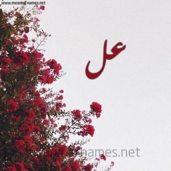 صورة اسم عل AL شكل 18 صوره الورد الأحمر للإسم بخط رقعة