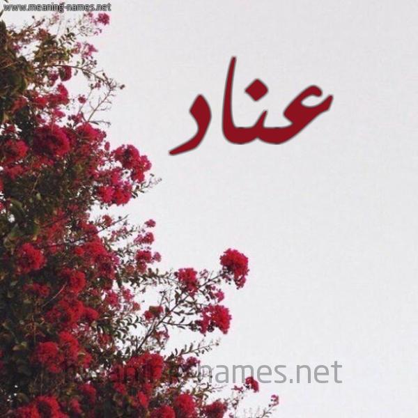 صورة اسم عناد Anad شكل 18 صوره الورد الأحمر للإسم بخط رقعة