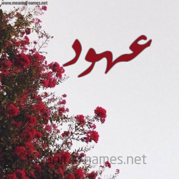 صورة اسم عهود Ohood شكل 18 صوره الورد الأحمر للإسم بخط رقعة