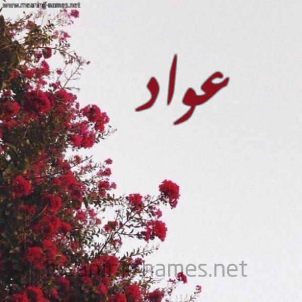 شكل 18 صوره الورد الأحمر للإسم بخط رقعة صورة اسم عواد Awad