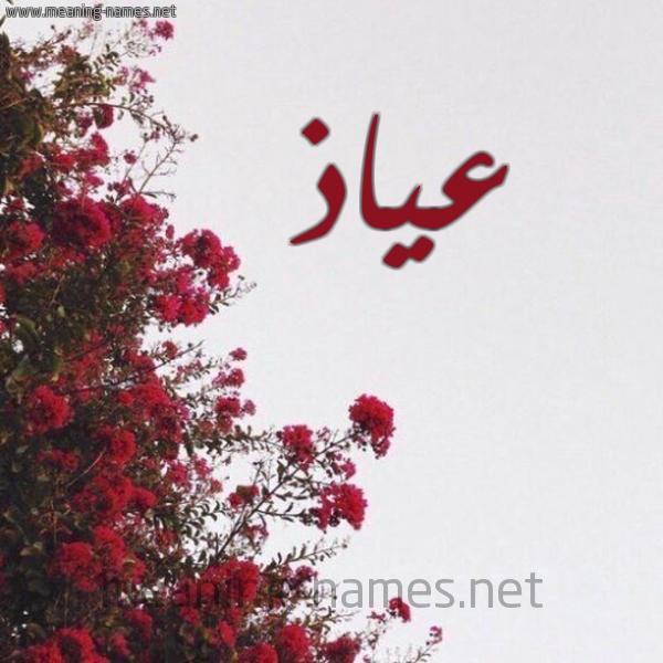 صورة اسم عياذ Ayadh شكل 18 صوره الورد الأحمر للإسم بخط رقعة