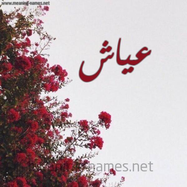 صورة اسم عياش Ayash شكل 18 صوره الورد الأحمر للإسم بخط رقعة