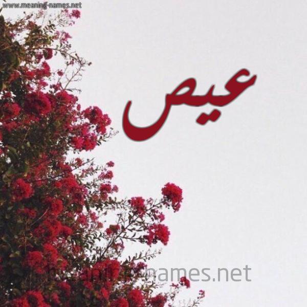 صورة اسم عيص Ays شكل 18 صوره الورد الأحمر للإسم بخط رقعة