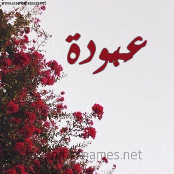 شكل 18 صوره الورد الأحمر للإسم بخط رقعة صورة اسم عَبُّودة AABOODH