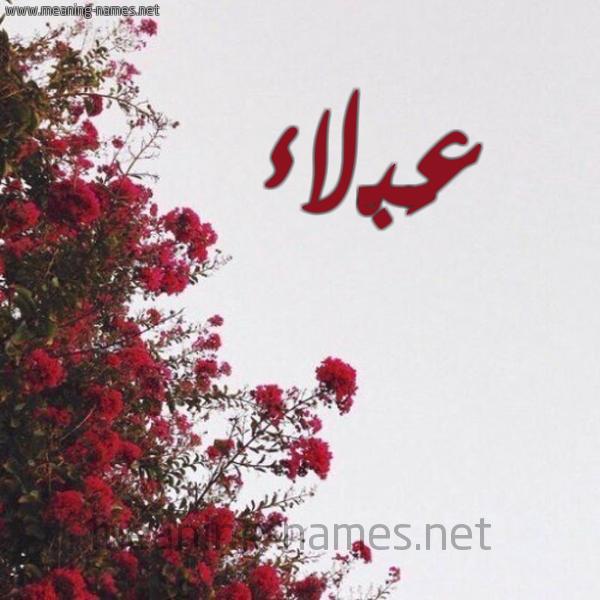 شكل 18 صوره الورد الأحمر للإسم بخط رقعة صورة اسم عَبْلاء AABLAA