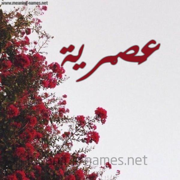 شكل 18 صوره الورد الأحمر للإسم بخط رقعة صورة اسم عَصْرية AASRIH