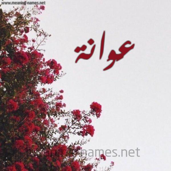 صورة اسم عَوَانة AAOAANH شكل 18 صوره الورد الأحمر للإسم بخط رقعة