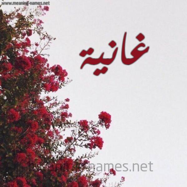 صورة اسم غانية Ghanyh شكل 18 صوره الورد الأحمر للإسم بخط رقعة