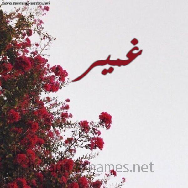 صورة اسم غمير Ghmyr شكل 18 صوره الورد الأحمر للإسم بخط رقعة