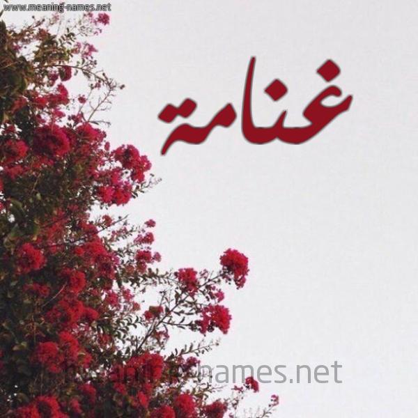 شكل 18 صوره الورد الأحمر للإسم بخط رقعة صورة اسم غنامة GHNAMH