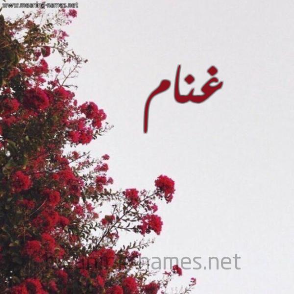 صورة اسم غنام GHNAM شكل 18 صوره الورد الأحمر للإسم بخط رقعة