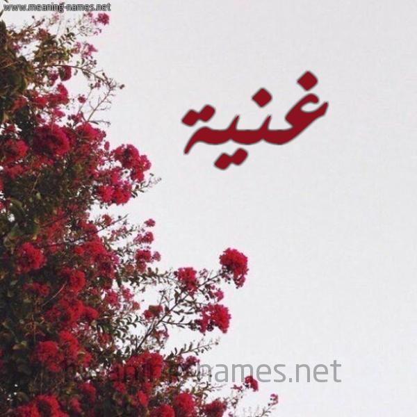 صورة اسم غنية Ghnyh شكل 18 صوره الورد الأحمر للإسم بخط رقعة