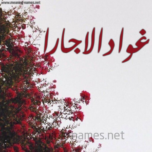 صورة اسم غوادالاجارا GHOADALAGARA شكل 18 صوره الورد الأحمر للإسم بخط رقعة