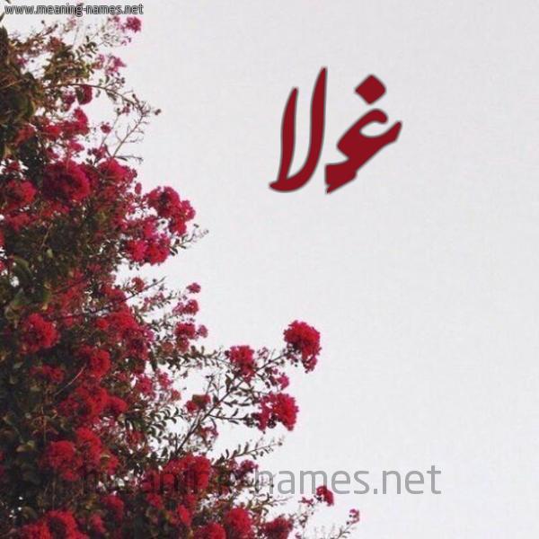كل زخرفة وحروف Ghala زخرفة أسماء كول