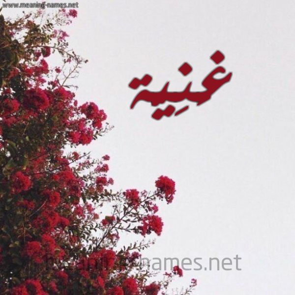 شكل 18 صوره الورد الأحمر للإسم بخط رقعة صورة اسم غَنِيَّة GHANEIAH