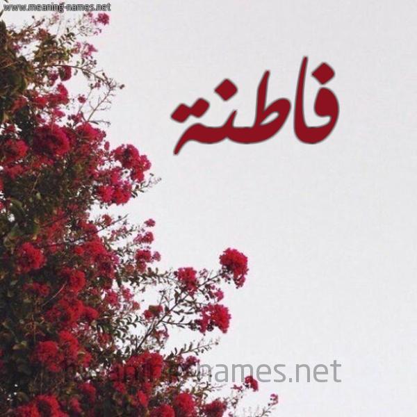 شكل 18 صوره الورد الأحمر للإسم بخط رقعة صورة اسم فاطنة Fatnh