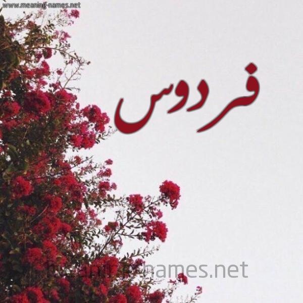 صورة اسم فردوس Frdws شكل 18 صوره الورد الأحمر للإسم بخط رقعة