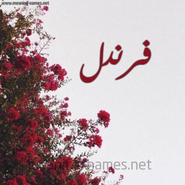 صورة اسم فرندل Frndl شكل 18 صوره الورد الأحمر للإسم بخط رقعة