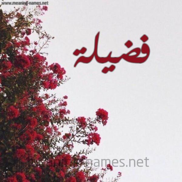 شكل 18 صوره الورد الأحمر للإسم بخط رقعة صورة اسم فضيلة Fadela