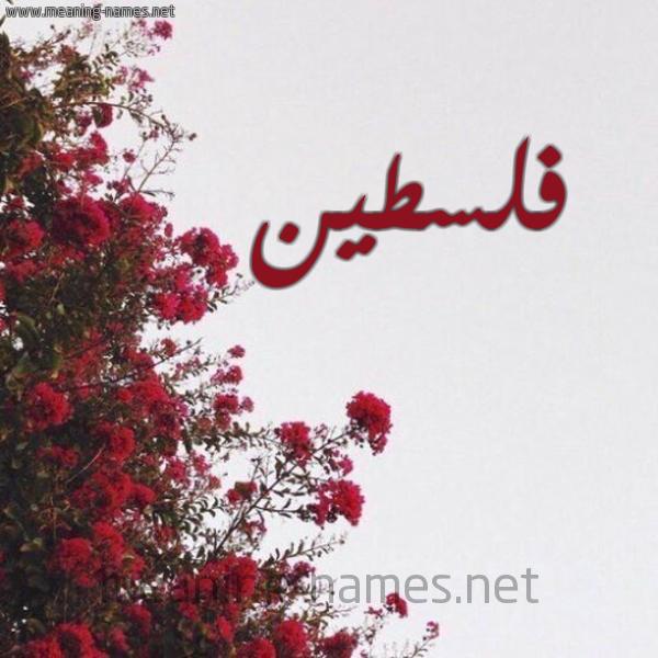 صورة اسم فلسطين Palestine شكل 18 صوره الورد الأحمر للإسم بخط رقعة