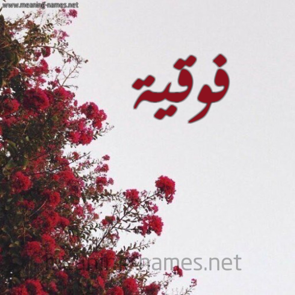 صورة اسم فوقية Fwqyh شكل 18 صوره الورد الأحمر للإسم بخط رقعة