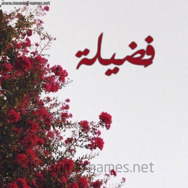 شكل 18 صوره الورد الأحمر للإسم بخط رقعة صورة اسم فَضيلة FADILH