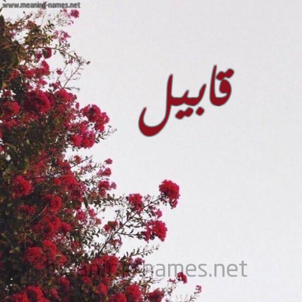صورة اسم قابيل Qabil شكل 18 صوره الورد الأحمر للإسم بخط رقعة