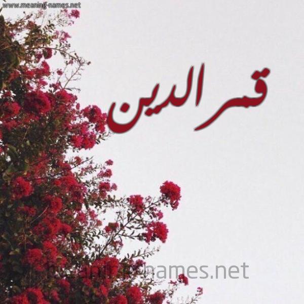 صورة اسم قمرالدين Qmraldyn شكل 18 صوره الورد الأحمر للإسم بخط رقعة