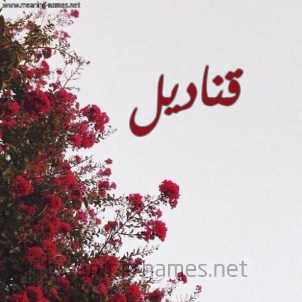 صورة اسم قناديل Qnadyl شكل 18 صوره الورد الأحمر للإسم بخط رقعة