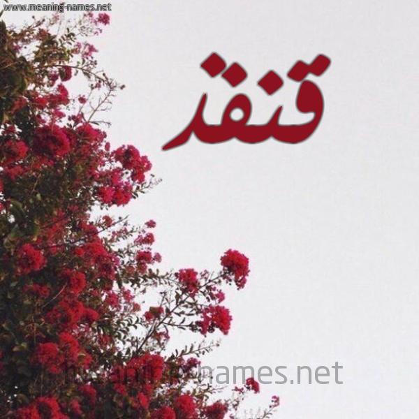 شكل 18 صوره الورد الأحمر للإسم بخط رقعة صورة اسم قنفذ QNFZ