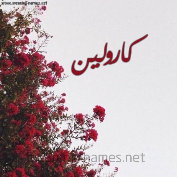 صورة اسم كارولين Karolin شكل 18 صوره الورد الأحمر للإسم بخط رقعة