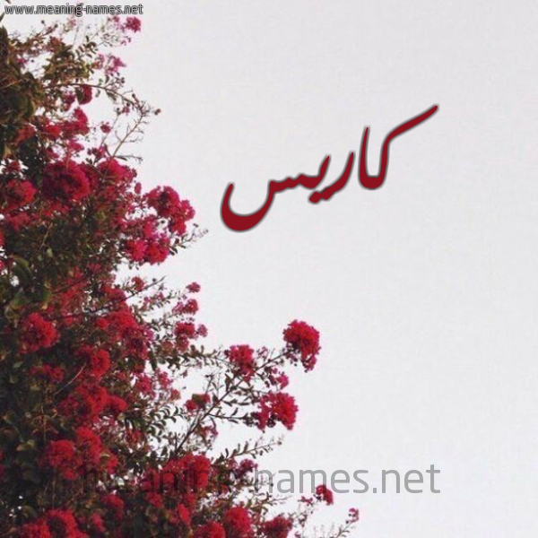 صورة اسم كاريس cares شكل 18 صوره الورد الأحمر للإسم بخط رقعة