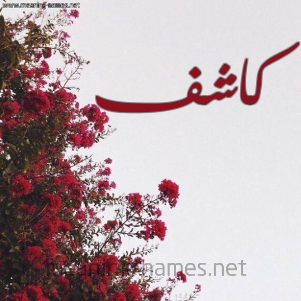 صورة اسم كاشف Kashf شكل 18 صوره الورد الأحمر للإسم بخط رقعة