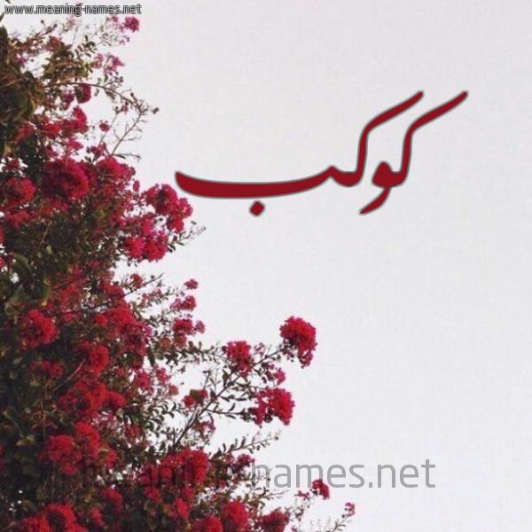 صورة اسم كوكب Kwkb شكل 18 صوره الورد الأحمر للإسم بخط رقعة