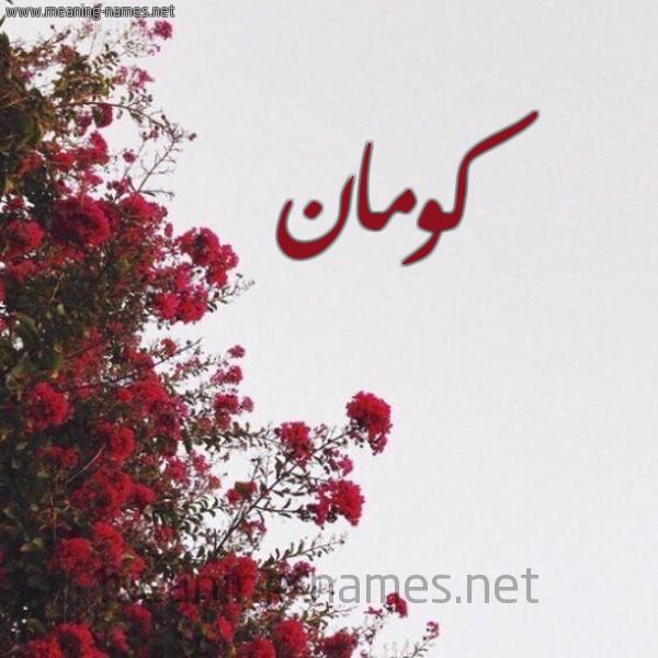 شكل 18 صوره الورد الأحمر للإسم بخط رقعة صورة اسم كومان KOMAN