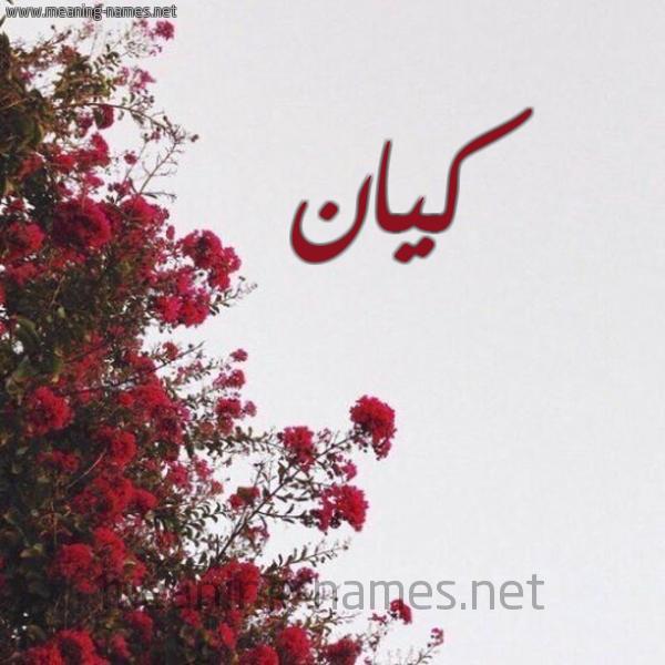 صورة اسم كيان Kayan شكل 18 صوره الورد الأحمر للإسم بخط رقعة