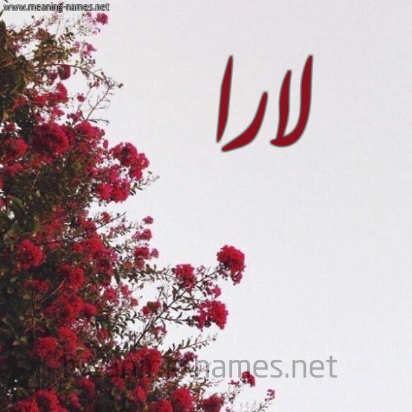 شكل 18 صوره الورد الأحمر للإسم بخط رقعة صورة اسم لارا Lara