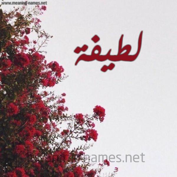 صورة اسم لطيفة Latifa شكل 18 صوره الورد الأحمر للإسم بخط رقعة