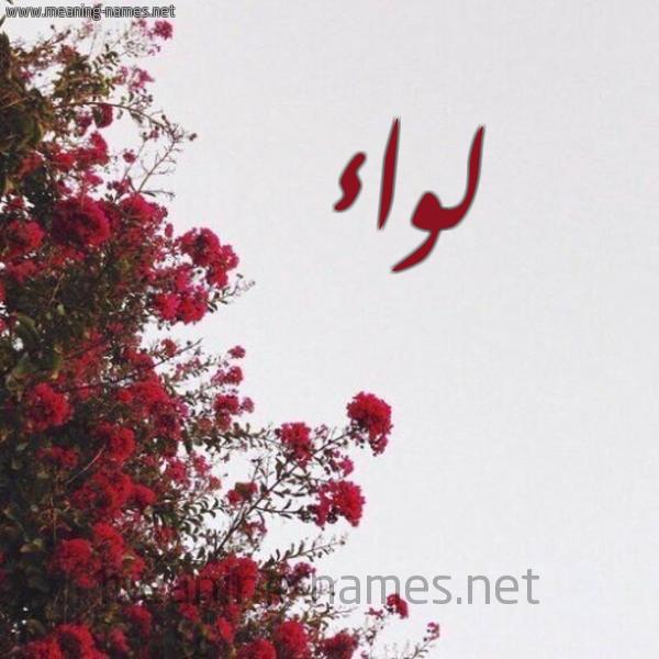 صورة اسم لواء Lwa'a شكل 18 صوره الورد الأحمر للإسم بخط رقعة