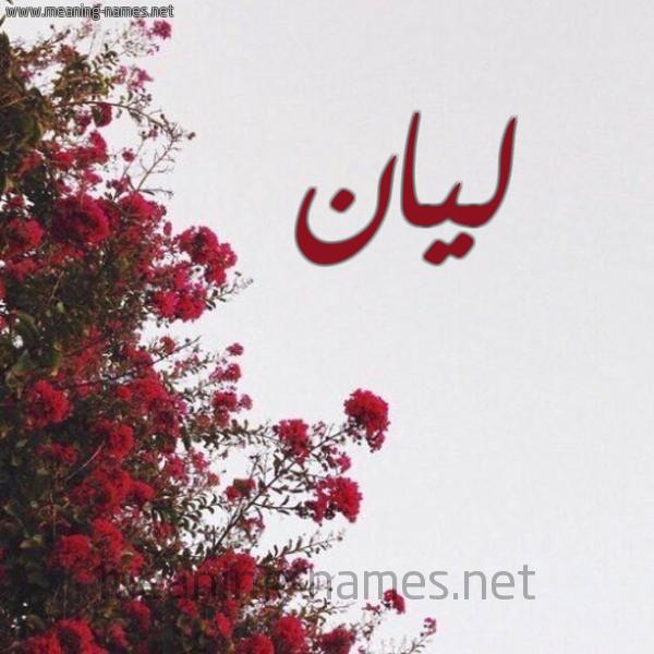 صورة اسم ليان Layan شكل 18 صوره الورد الأحمر للإسم بخط رقعة