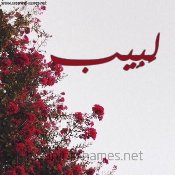 صورة اسم لَبِيب LABEIB شكل 18 صوره الورد الأحمر للإسم بخط رقعة