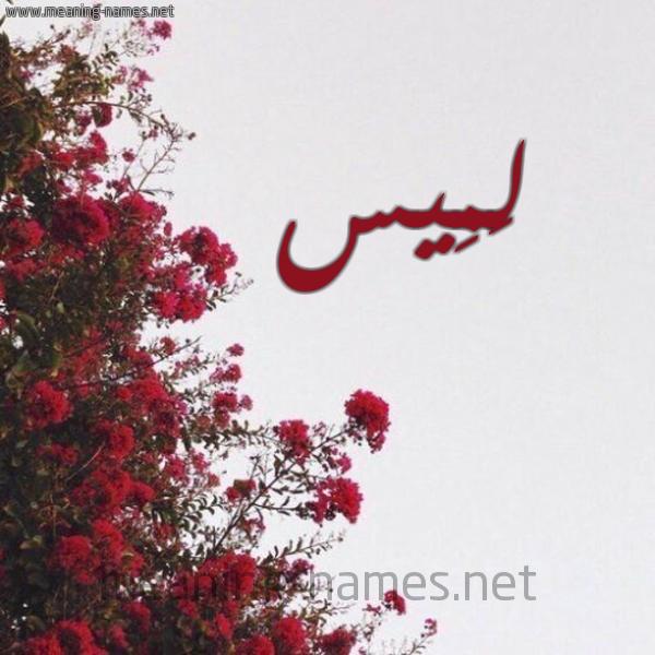 صورة اسم لَمِيس Lames شكل 18 صوره الورد الأحمر للإسم بخط رقعة