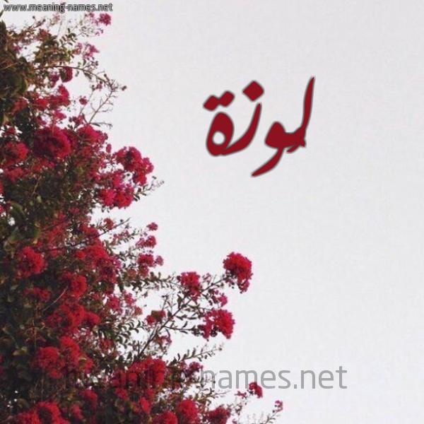 شكل 18 صوره الورد الأحمر للإسم بخط رقعة صورة اسم لُوزة LOOZH