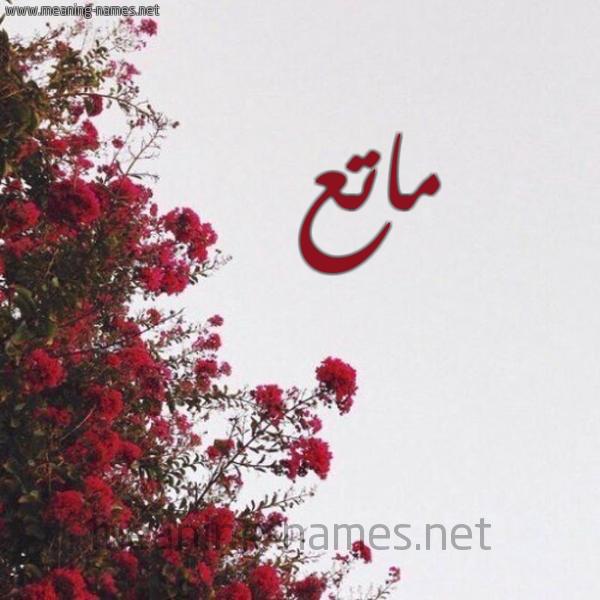 صورة اسم ماتع MATA شكل 18 صوره الورد الأحمر للإسم بخط رقعة