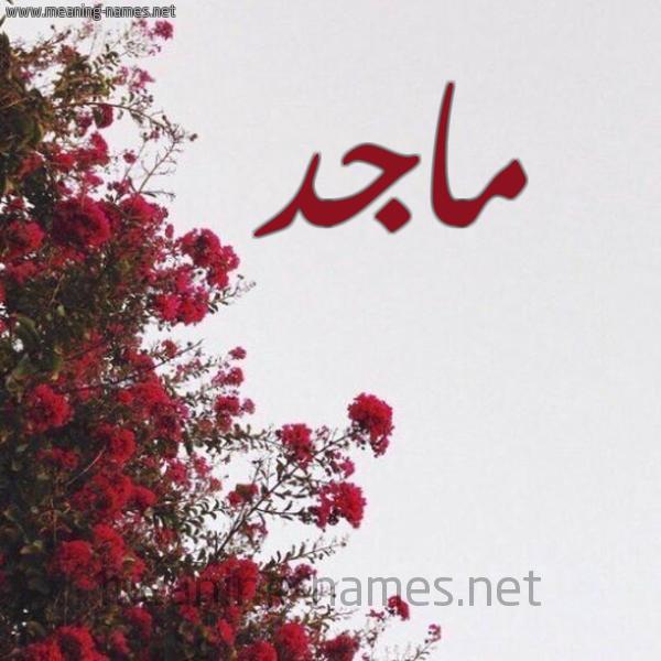 صورة اسم ماجد Maged شكل 18 صوره الورد الأحمر للإسم بخط رقعة
