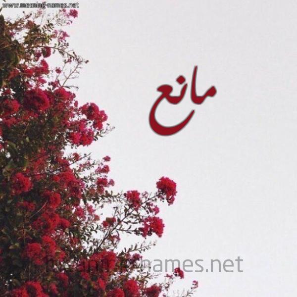 كل زخرفة وحروف مانع زخرفة أسماء كول