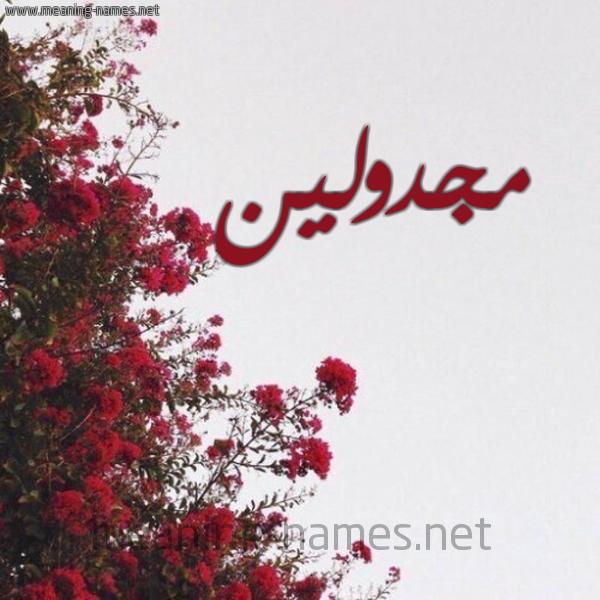 صورة اسم مجدولين MGDOLIN شكل 18 صوره الورد الأحمر للإسم بخط رقعة